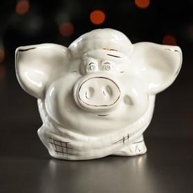 Копилка 'Свинка Фунтик', глазурь, белый цвет, 13 см Ош
