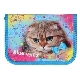 """Пенал 1 секция 130 х 190 мм, ламинированный картон, """"Голубоглазая кошка"""""""