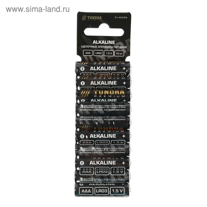 Батарейка алкалиновая TUNDRA, AAA, LR3, блистер, 10 шт