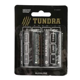Батарейка алкалиновая TUNDRA, D, LR20, блистер, 2 шт