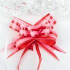 Бант- бабочка №1,2 простой с двумя полосами, красный