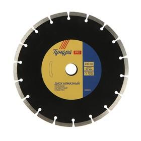 Диск алмазный отрезной TUNDRA PRO, повышенный ресурс, сегментный, сухой рез, 230 х 22 мм