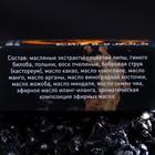 Духи сухие для мужчин с феромонами «Идеальный соблазнитель», 5 мл - Фото 4