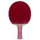 Ракетка для настольного тенниса Atemi 600 AN
