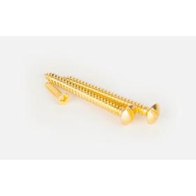 Винты для накладного выключателя WL18-21-01, цвет золото, ретро, 3 шт
