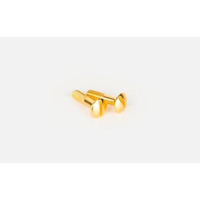 Винты для коробки и TV розетки WL18-22-01, цвет золото, ретро, 2 шт