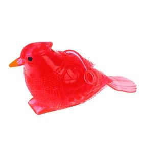 Мялка «Птичка», с гидрогелем, цвета МИКС Ош