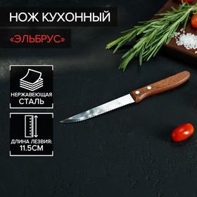 Нож кухонный «Эльбрус», зубчатое лезвие 11,5 см