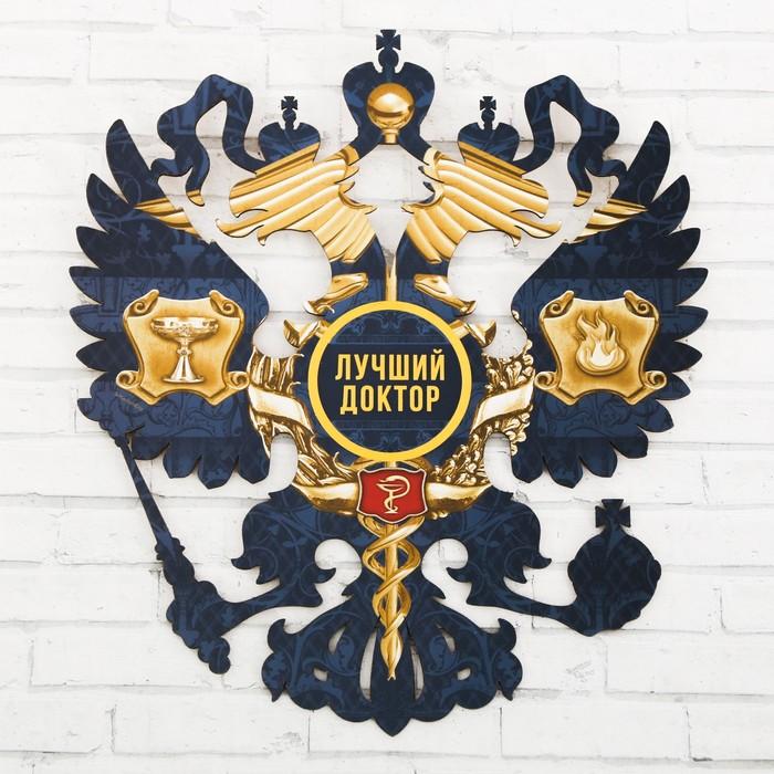 Герб настенный «Лучший доктор», 22,5 х 25 см