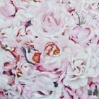 КПБ Rose 1.5 сп., 150 × 215 см, 145 × 210 см, 50 × 70 см - 2 шт., сатин - Фото 3