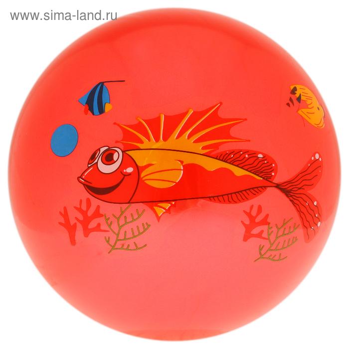 Мяч детский «Дельфинчики», d=25 см, 60 г, цвет красный, принт МИКС