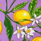 Полотенце вафельное Collorista Лимоны, цвет сиреневый 35х58,100% хл,160 г/м² - Фото 2