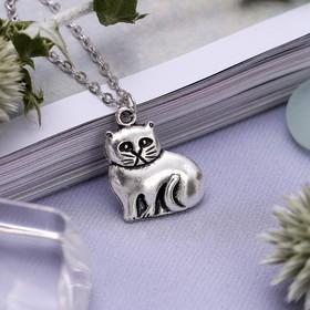 Кулон 'Котик' домашний, цвет серебро, 45 см Ош