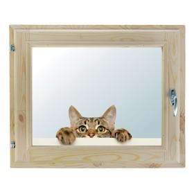 Окно, 40×60см, 'Кошак', однокамерный стеклопакет Ош