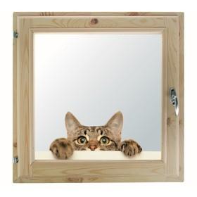 Окно, 50×50см, 'Кошак', однокамерный стеклопакет Ош