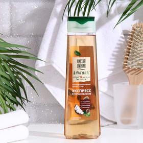 Мицеллярный шампунь для волос Чистая линия «Идеальные волосы», шелковица, 400 мл