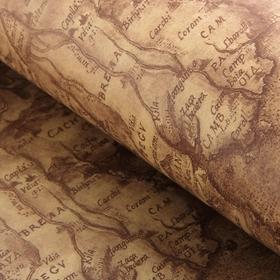 Бумага упаковочная 'Карта', коричневый, 52 х 75 см Ош