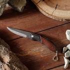 Нож складной, ручка металл, цвет под дерево, 8см, без фиксатора, 15*3см