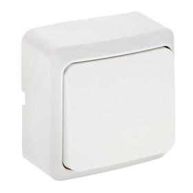 """Выключатель Luazon Lighting """"СПБ"""", 10 А, 1 клавиша, накладной, белый"""