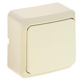 Выключатель Luazon Lighting 'СПБ', 10 А, 1 клавиша, бежевый Ош