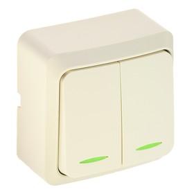 """Выключатель Luazon Lighting """"СПБ"""", 10 А, 2 клавиши, накладной, с подстветкой, бежевый"""