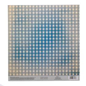 Бумага для скрапбукинга с клеевым слоем «Клетка», 20 × 21,5 см, 250 г/м