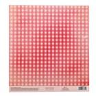 Бумага для скрапбукинга с клеевым слоем «Пин-ап», 20 ? 21,5 см, 250 г/м