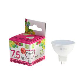 Лампа светодиодная ASD LED-JCDR-standard, GU5.3, 7.5 Вт, 230 В, 6500 К, 675 Лм