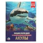 Энциклопедия с развивающими заданиями «Акулы»