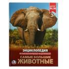 Энциклопедия с развивающими заданиями «Самые большие животные»