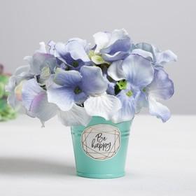 Металлическое кашпо для цветов Be happy every day 5,5 × 5,5 см Ош