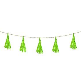 Лента тассел, набор 5 шт., цвет зелёный Ош