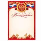 Благодарность красная, РФ символика, 14,8х21 см