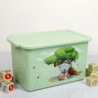 Контейнер для игрушек 15 л Mommy love, цвет чайное дерево