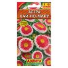 "Семена цветов Астра ""Хай-но-мару"" помпонная, О, 0,1 г - Фото 5"