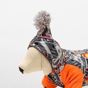Комбинезон 'Принт' с помпоном для собак, размер XS (ДС 18-20 см, ОШ 24 см, ОГ 30-32 см) Ош