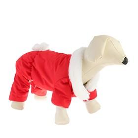 Комбинезон для собак с меховым воротником, XL (ДС 32-34 см, ОШ 32 см, ОГ 46-48 см), красный Ош