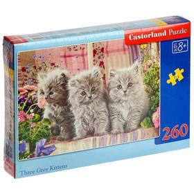 Пазл «Серые котята», 260 элементов