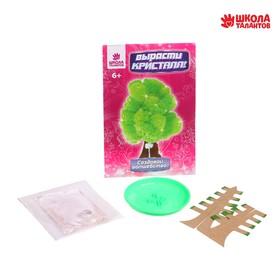 Набор для выращивания кристалла «Волшебное дерево» цвет зелёный Ош