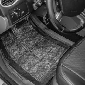 Коврики влаговпитывающие Avtomil Dry Car, 40 х 60 см, водонепроницаемая основа, набор 2 шт