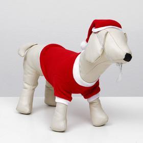 Костюм для собак Новогодний колпак + кофточка, S (ДС 19-21 см, ОШ 26 см, ОГ 32-34 см) Ош