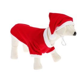 Костюм для собак Новогодний колпак + кофточка, M (ДС 22-24 см, ОШ 28 см, ОГ 34-36 см) Ош
