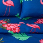 Постельное бельё «Экономь и Я» Фламинго (вид 2) 2 сп. 175×215 см, 200×220 см, 50×70 см - 2 шт, микрофайбер, 75 г/м² - Фото 2