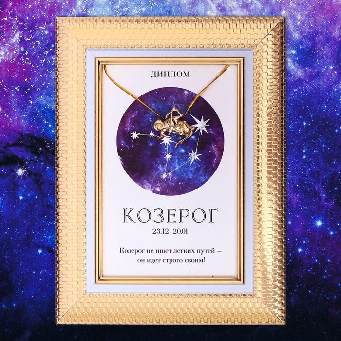 """Подарочный набор диплом и брошь знаки зодиака """"Козерог"""""""