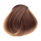 7.73 Светло-русый коричнево-золотистый