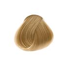 8.0 Блондин