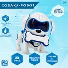 Интерактивная собака-робот «Чаппи», русское озвучивание, световые и звуковые эффекты, цвет синий - Фото 1