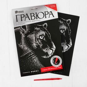 Гравюра «Пантера» с металлическим эффектом серебра А4 Ош