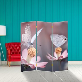 Ширма 'Бабочка. декор 7', 160 × 150 см Ош