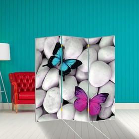 Ширма 'Бабочка. декор 13', 160 × 150 см Ош